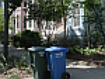 Trash and recycle cans at curb