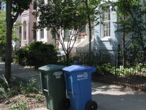 Trash and recycling cans on a residential street